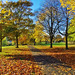 Dudhope Park Autumn colours by eric robb niven