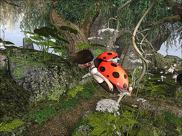 Once Upon A Fairy Tale -Lady Bug Magic