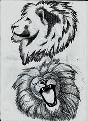 art, sketch, roar, drawing, cartoon, illustration,