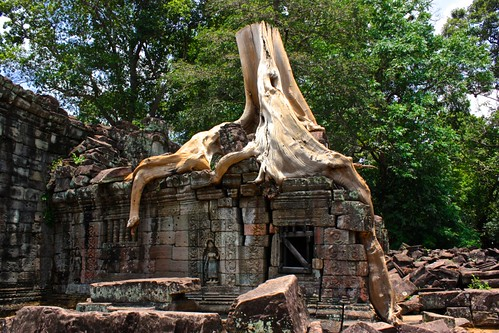 when nature takes over at Preah Khan