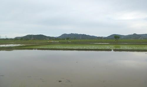 Sulawesi13-Sengkang-Pare Pare (48)