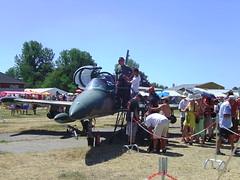 L-39 Albatrosz sorral