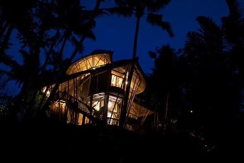 Bambus House v14