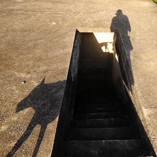 ,,  Shadows ,,