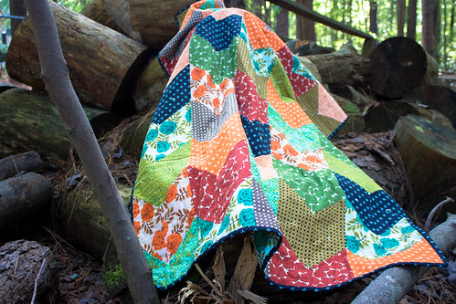Arrow Tail Quilt Cozy