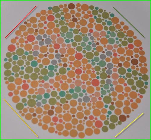 Widzenie barw kategoria B