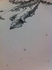 Mirra's weed prints