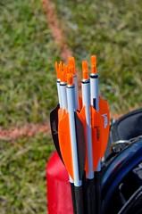 2013 Senior Games - Archery