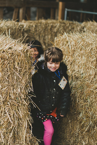 Enjoying the Hay Maze
