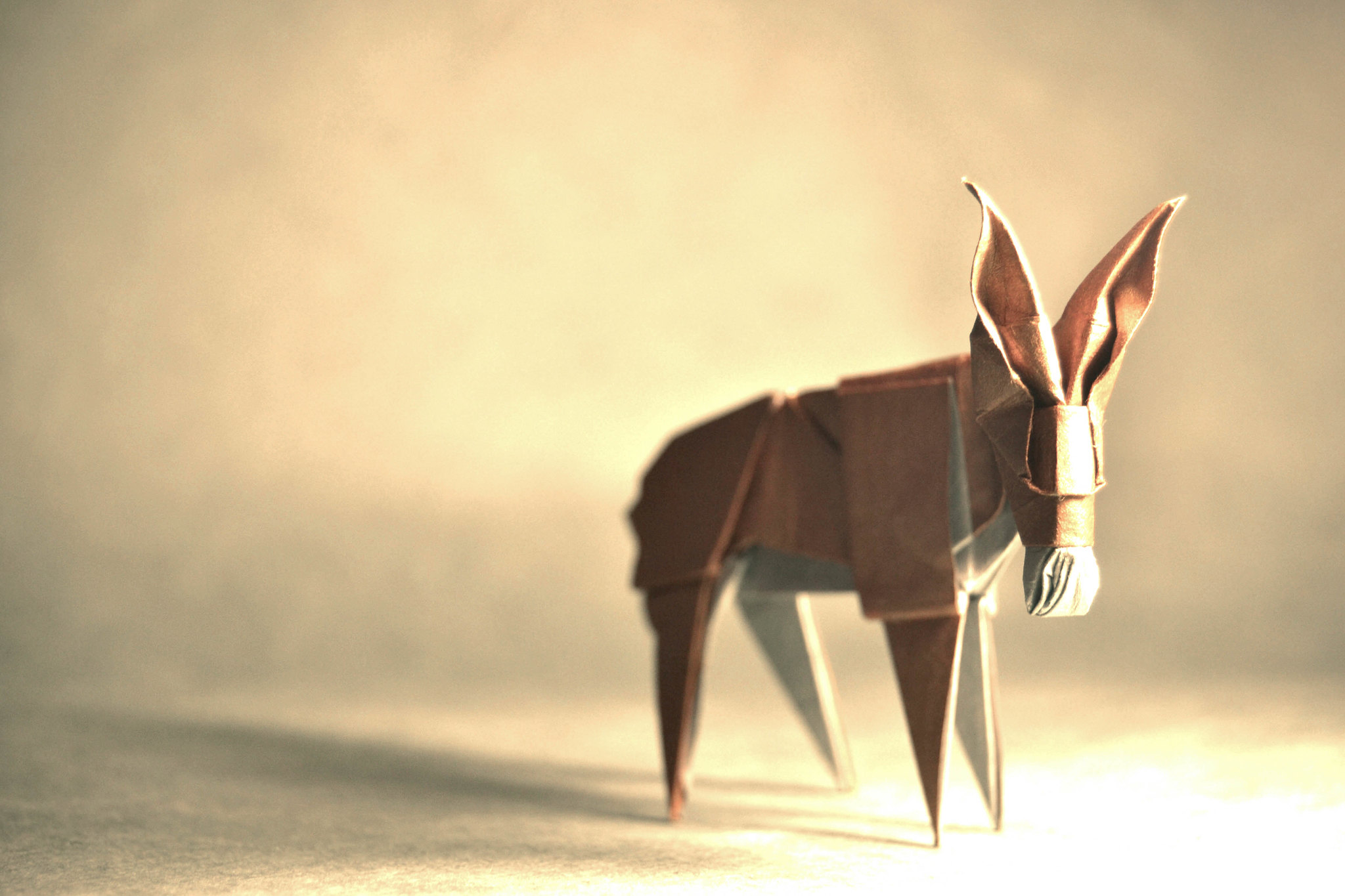 Origami Donkey - Román Díaz
