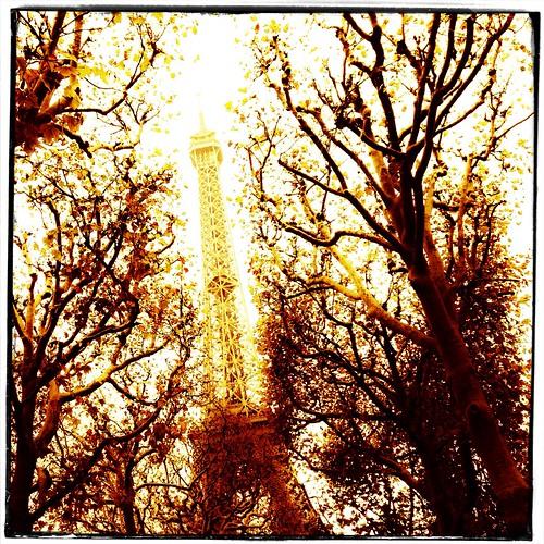 Autumn Eiffel by Paris Set Me Free