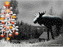 Thunder Moose´s Christmas Vision on Crow Mountain - Moving Gif
