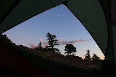 From the Tent