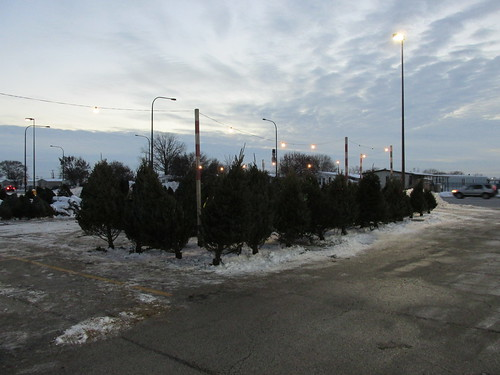 A seasonal outdoor live Christmas tree sales lot.  Bridgeview Illinois.  December 2013. by Eddie from Chicago