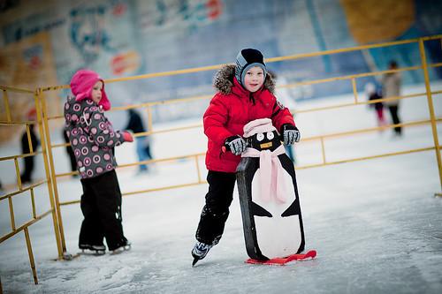 pingvini_na_katke
