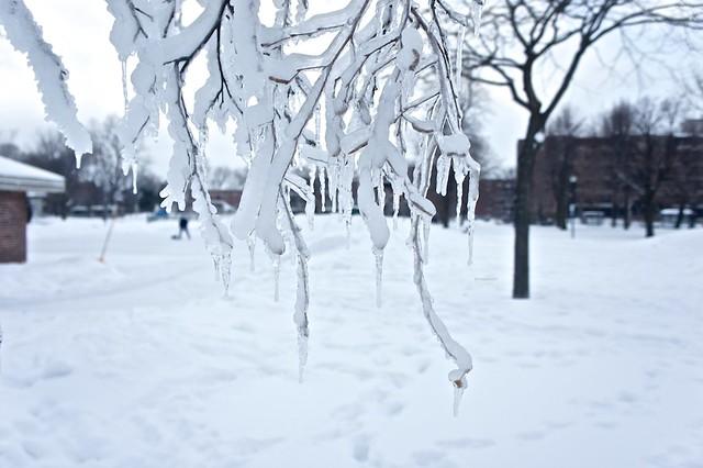 anteketborka.blogspot.com, hiver7