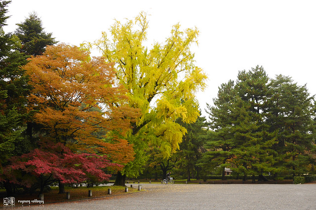 Panasonic_GX7_Kyoto_18