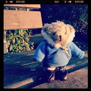 #teddybear  #tully'sbear #bearful