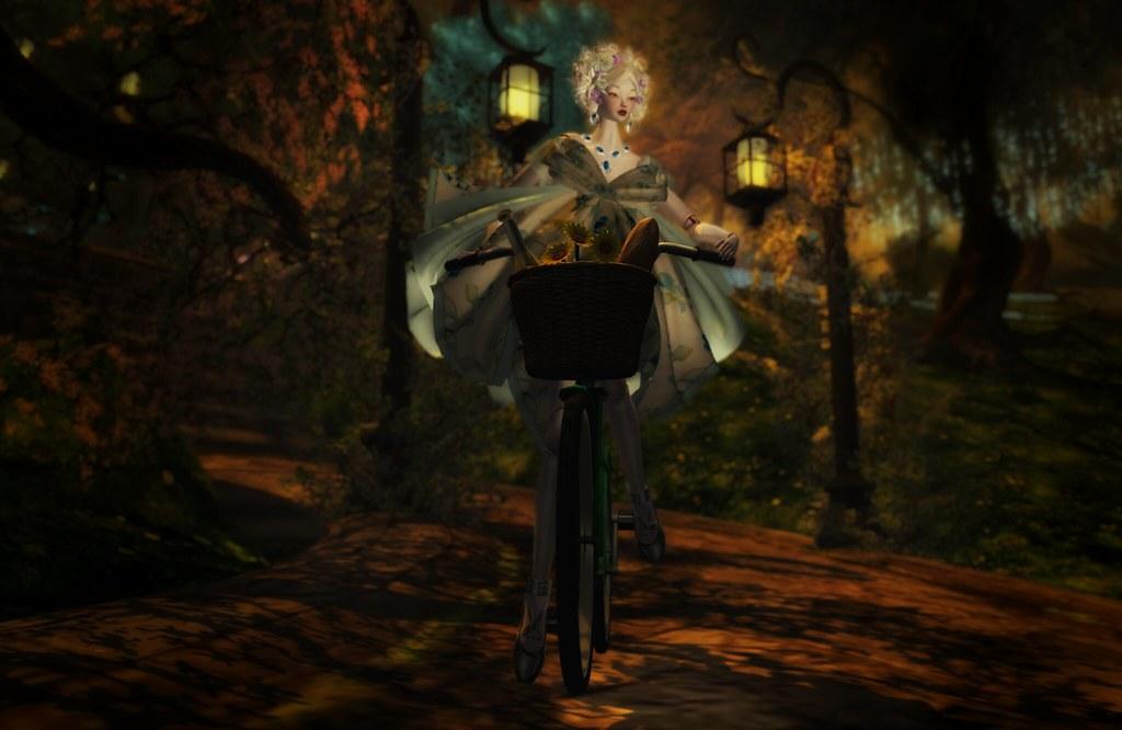 ~Twilight Ride~