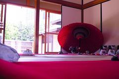 'Wagasa' Japanese Umbrellas, Tokyo Hamarikyu Gardens