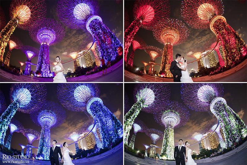 Ảnh cưới Tú - Vân Anh (Singapore)