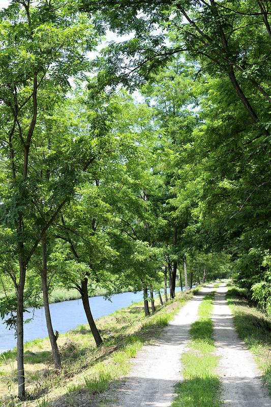 """""""SESERAGI no Komiti"""" Riverside path,Azumino,Nagano"""