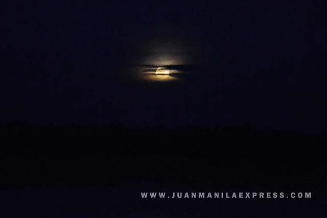 THE HONEY MOON. The Honey Moon slowly moving up and showed up its howling full brightness.
