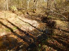 DSCN2534 268 Creek Crossing