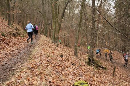 Trailová Závist se běží letos ze Zvole