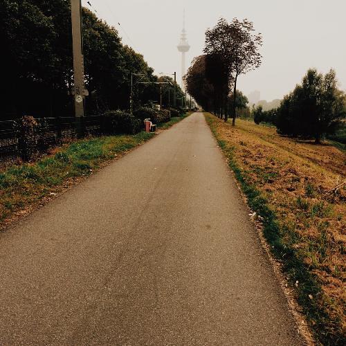 Mosconi, Federico; Mannheim, Germany - 11 Walking Etiquette