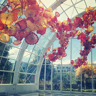 Chihuly never disappoints.