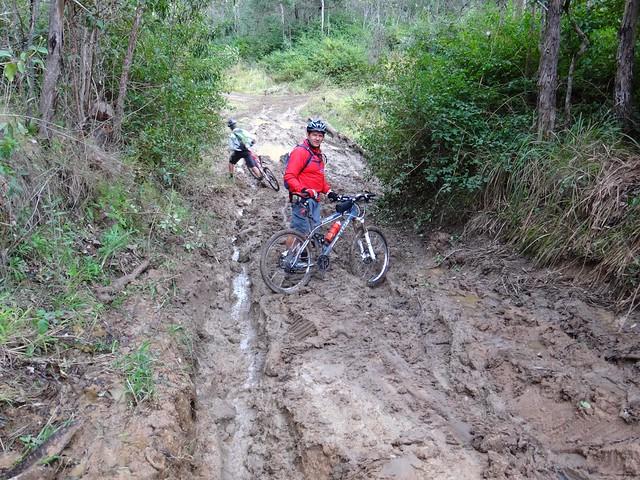 Glorious Mud