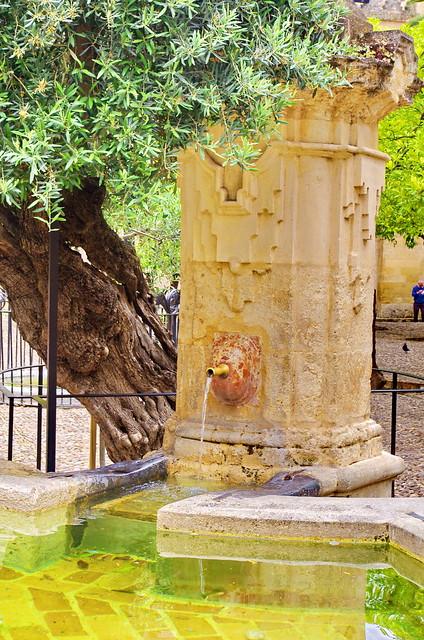 Cordoue c rdoba 10 mezquita catedral de c rdoba le for Le jardin interieur