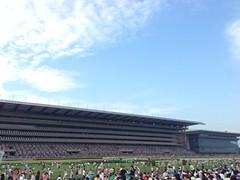 2013東京競馬場の花火大会レポ!楽しさも大きさも盛り上がりも最大級!