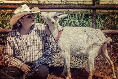Gooseberry Lake : 4-H Rodeo 2013 : That's the Spot