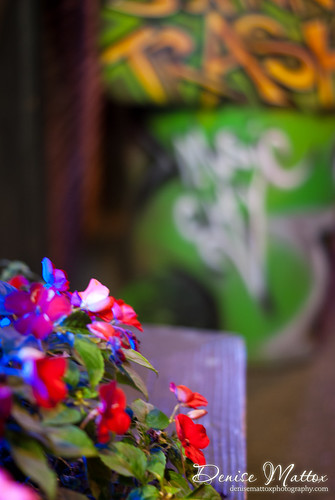 290: Flowers