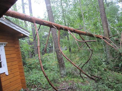 ミニログハウスの屋根の端にかかって庭に倒れています by Poran111