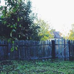 The fence that has seen better times.... Still there, like in the good old days....