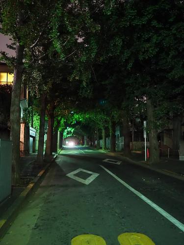 田園調布駅前の夜