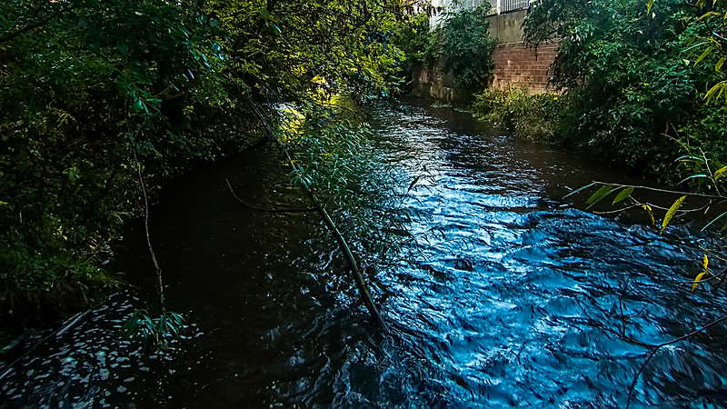 water of leith 13