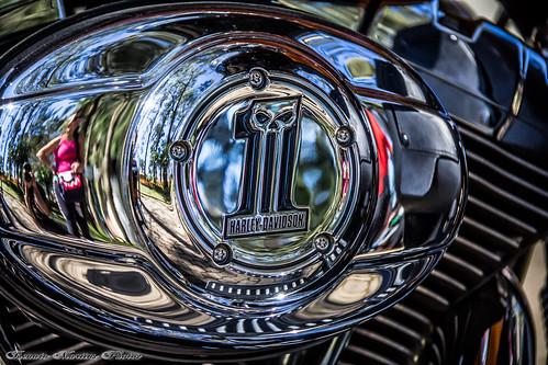 Harley Davidson - Motor