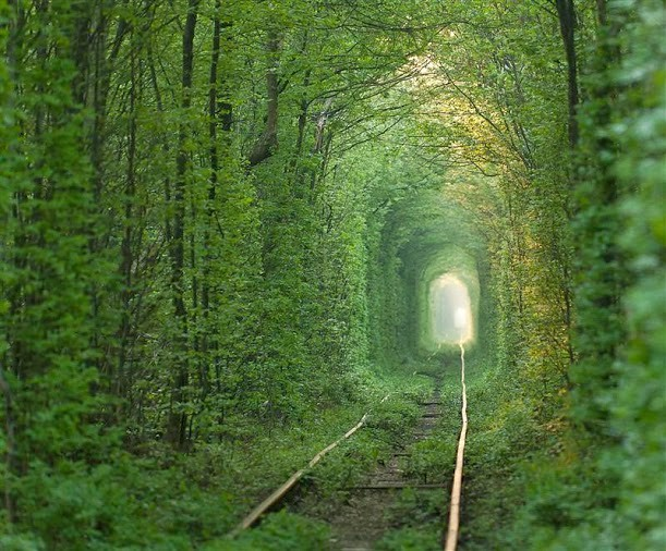 Tunnel-of-Love-in-Ukraine-Klevan