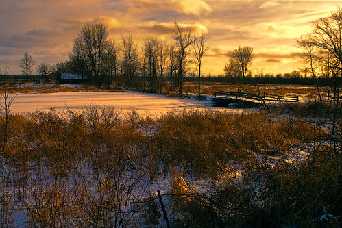 landscape winterlandscape