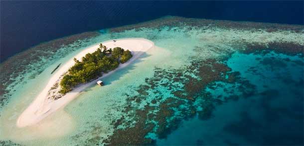 马尔代夫蓝色和平组织