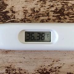 熱、落ち着いたっぽい