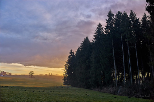 abend licht schatten sunset wiese wald bayerischesoberland promberg oberhof penzberg landschaft oberbayern bavaria deutschland germany leica m9 captureone7 colorefexpro4 leicasummilux35mmf14asphii