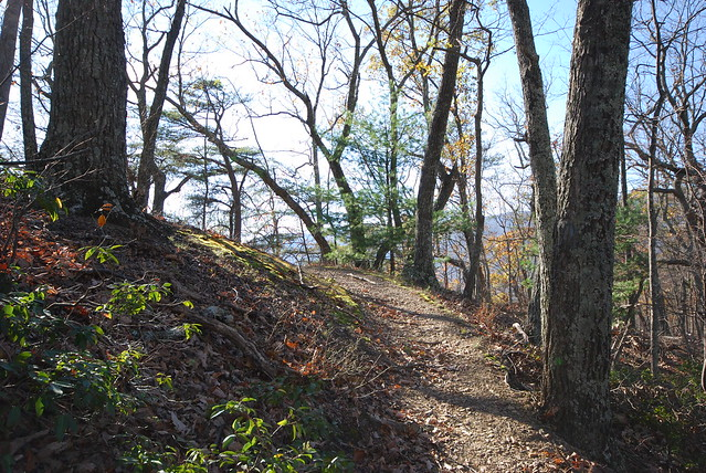 Got trails? We have over 40 miles of trails at Douthat State Park!