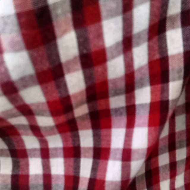 My red-and-white plaid shirt, perfect for Canada Day