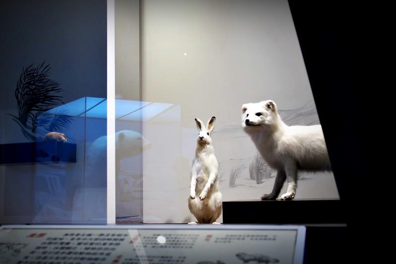 P7110885-台中-國立自然科學博物館
