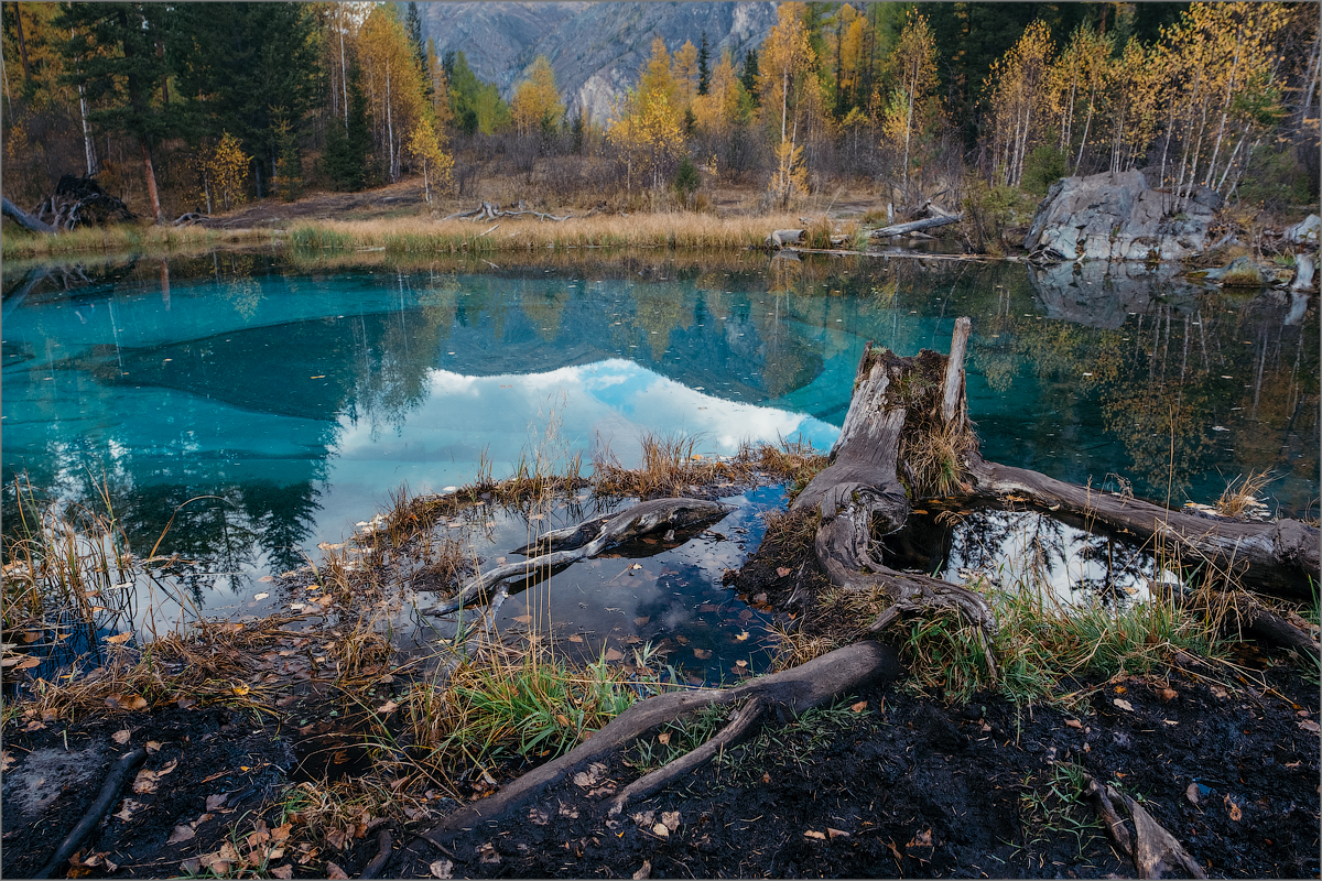 Blue Lake. Altay. Russia